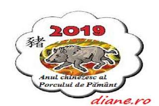 2019: Anul chinezesc al Porcului de Pământ