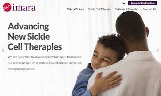 Imara Develop Novel Therapies For People Living With Sickle Cell Disease