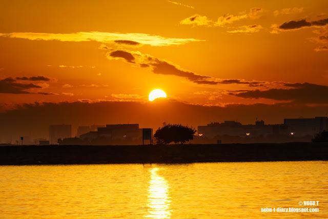 夕日のダイヤモンド富士~葛西臨海公園