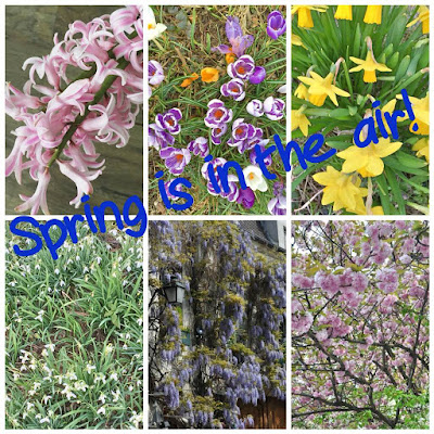 5 Reasons why I am looking forward to Spring