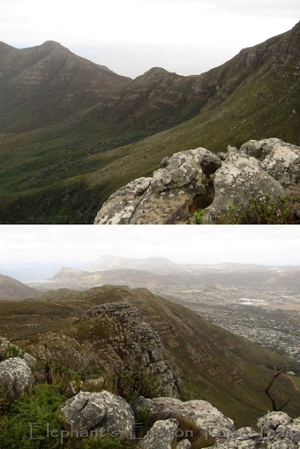 In Silvermine the slopes of Spitskop and looking across our valley