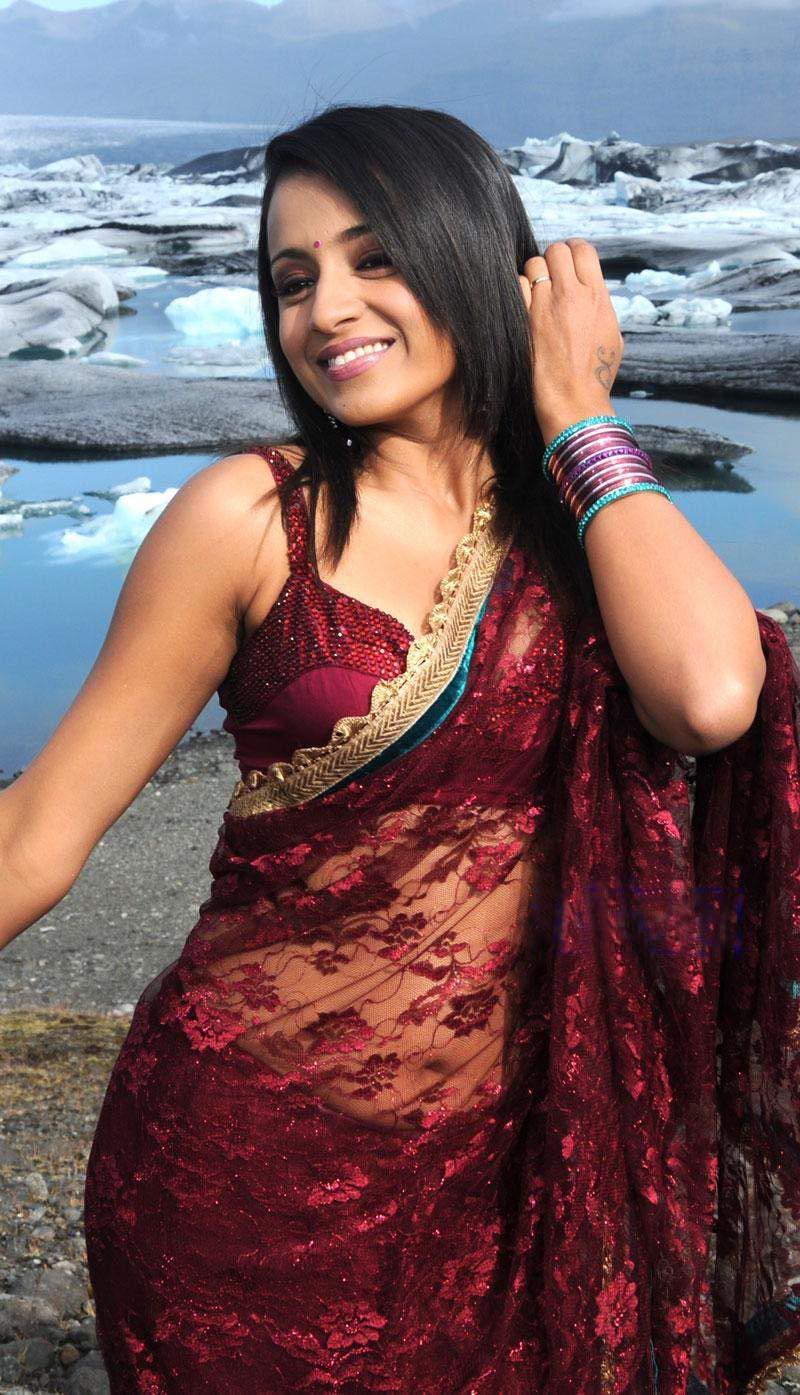 Think, that Trisha krishnan saree join. was