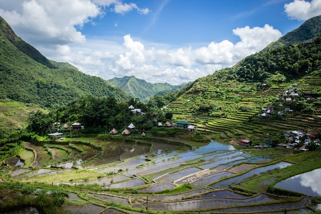 Preventing an agricultural and ecological crisis in the Philippines' Benguet Province