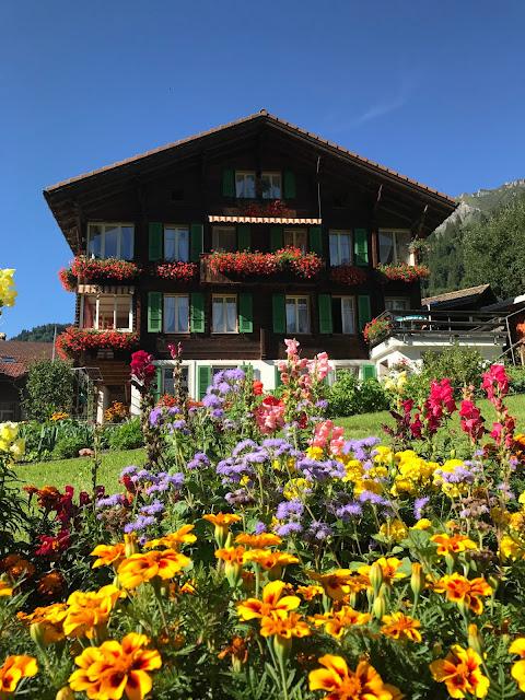 Lauterbrunnen, Flores, Europa, Alpes Suíços