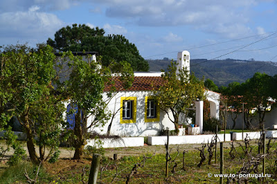 дома для сдачи в Португалии