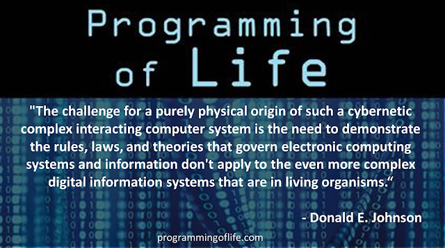 "Quote from Donald Johnson's book ""Programming of Life""- ""The challenge for a purely physical origin of such a cybernetic complex interacting computer system is the need to demonstrate the rules, laws, and theories that govern electronic computing systems and information don't apply to the even more complex digital information systems that are in living organisms.""- #IsGenesisHistory #intelligentdesign #Science #ComputerScience #Biochemistry"