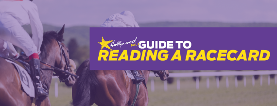 Rading a Racecard with Hollywoodbets