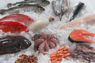 Pengawetan Ikan Dengan Suhu Rendah : Pendinginan