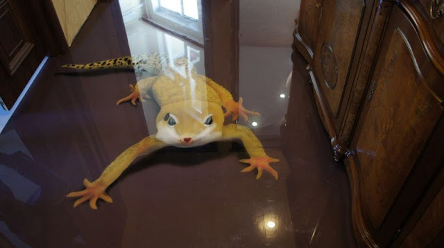 creative-3d-floor-designs-with-reptiles-themes-for-rooms, glass flooring with 3d art