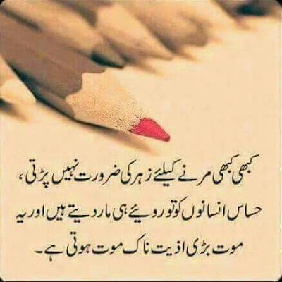 dear diary urdu poetry, love quotes, thoughts and silent words