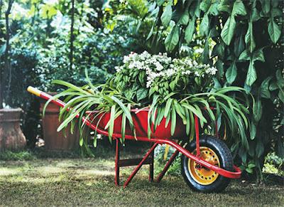Carrinho de mão no jardim com flores - reciclagem