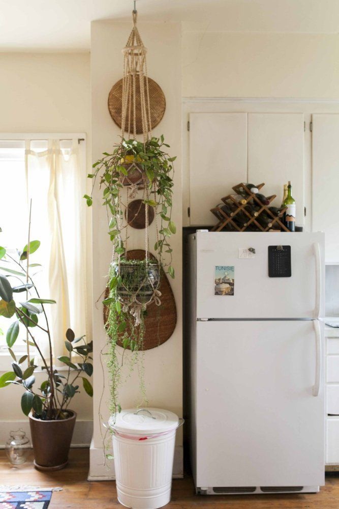 Plants For Kitchen To Decorate It: Moon To Moon: Earthy Bohemian Kitchens