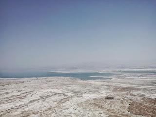 Dead Sea Men Lotion