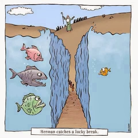 Funny Moses Parting Red Sea Cartoon - Herman catches a luck break