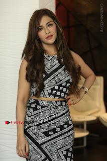 Telugu Actress Angela Krislinzki Latest Pos in Short Dress  0050.JPG