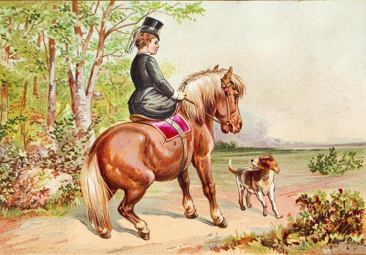 CatnipStudioCollage-: Free Vintage Clip Art - Victorian Horses