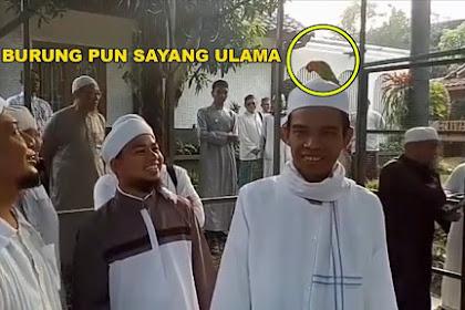 Seekor Burung Hinggap di Kepala Ustadz Abdul Somad dan Tak Mau Pergi