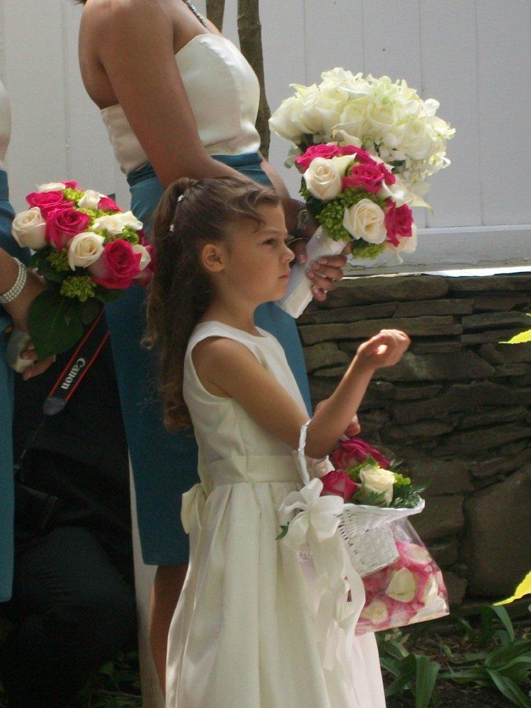 Nicolette Pierini