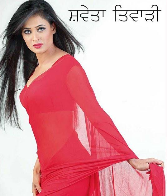 Shweta Tiwari Hot Thighs Cleavage Red Saree Gorgeous Sexy Pose Sabwood Com Shweta tiwar posted by helle at 9:53 pm. sabwood com