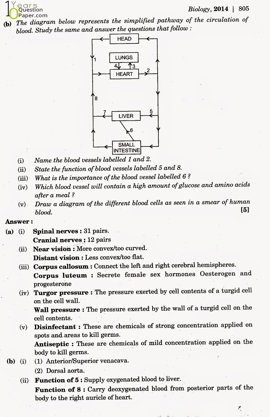 Maths Sample Papers For Class 10 Icse