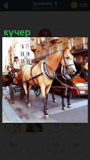 на дороге в городе стоит кучер с повозкой под светофором