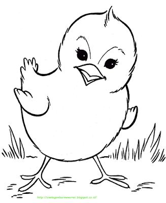 Gambar Mewarnai Ayam - 8