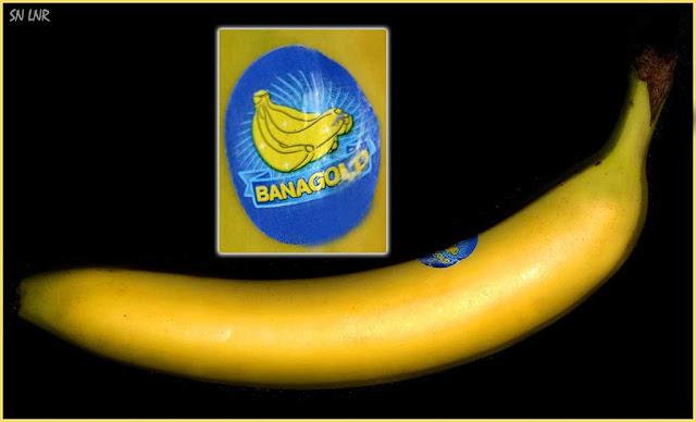 Banagold