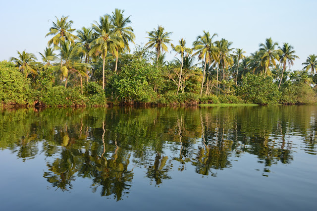 Aux abords des Backwaters au kerala