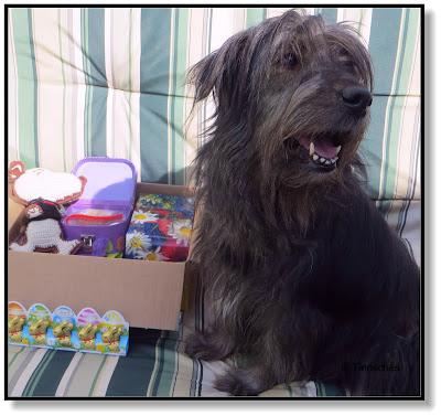 Lotte freut sich über die Geschenke