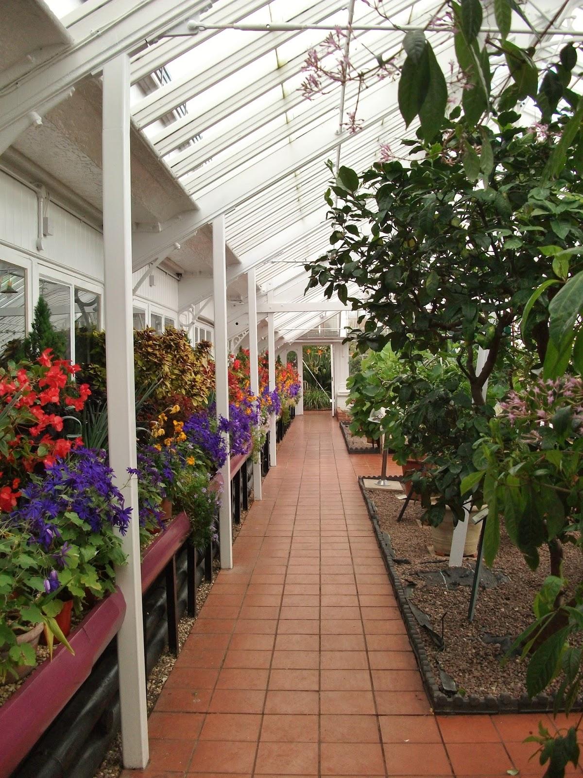 Ghost Blooms: Birmingham Botanical Gardens