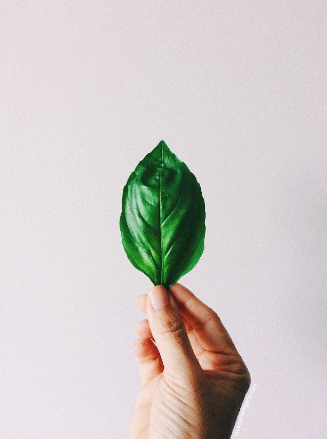 Pesto albahaca / Pesto genovés vegano