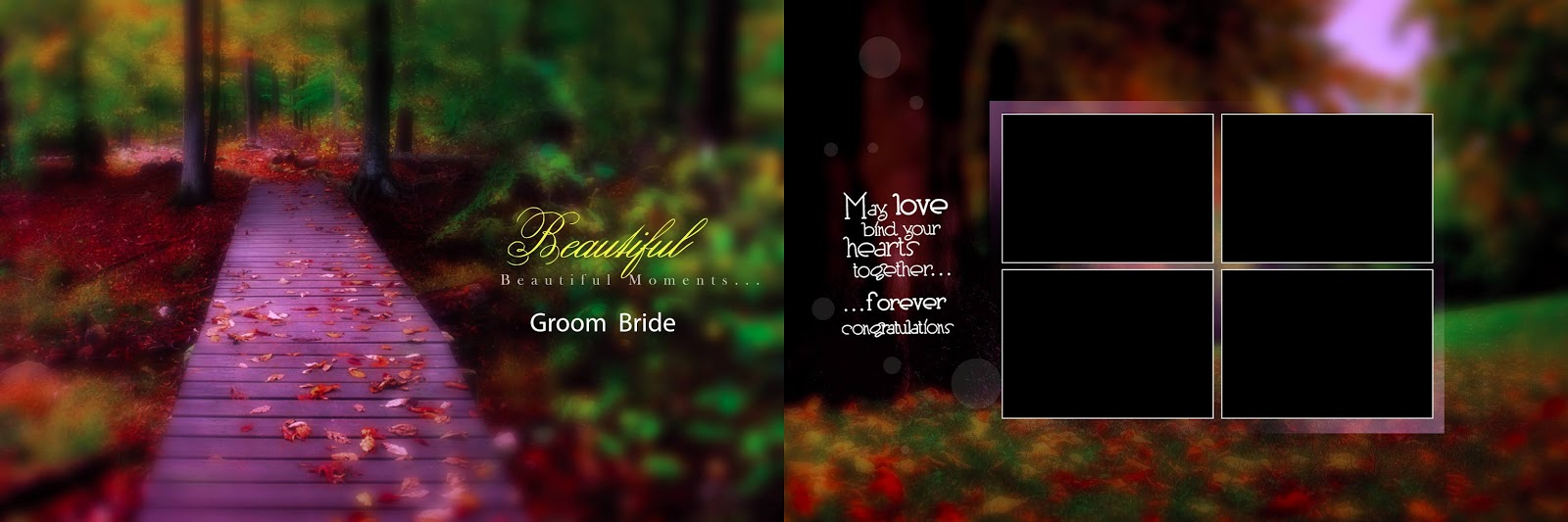 Creative Wedding Album Background 2019 12x36 Psd File Vol 4