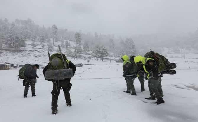 Chamarras, abrigo, frío, guantes, nieve