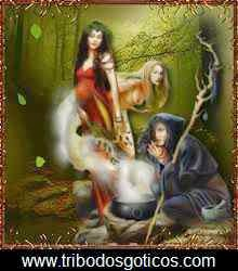 wicca,buxas,magia,floresta