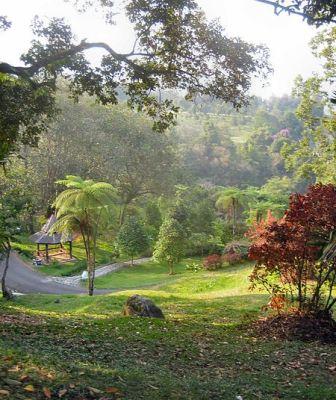 Kebun Raya Cibodas, Jawa Barat