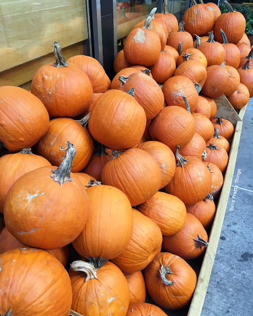 Tori's Pretty Things // Fall Pumpkin Patch