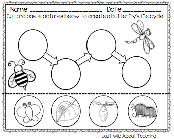 Worksheets Butterfly Life Cycle Worksheet life cycle of a butterfly worksheets and growth teaching resources sparklebox number names worksheets