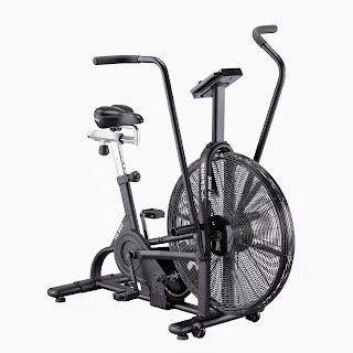 Lifecore Fitness Assault Air Bike, picture, image, review features & specifications plus compare with Schwinn AD Pro