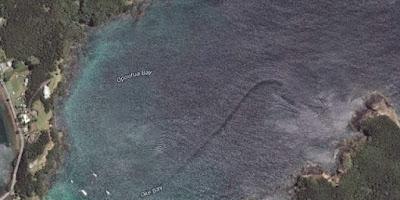Berita Misteri - Naga Air Selandia Baru