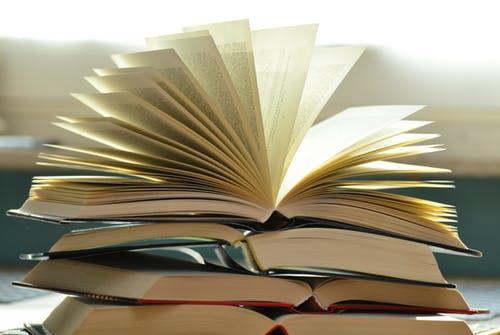 9 RAU IAS 2019 TEST SERIES PAPER 9 BOTH HINDI ENGLISH WITH SOLUTION