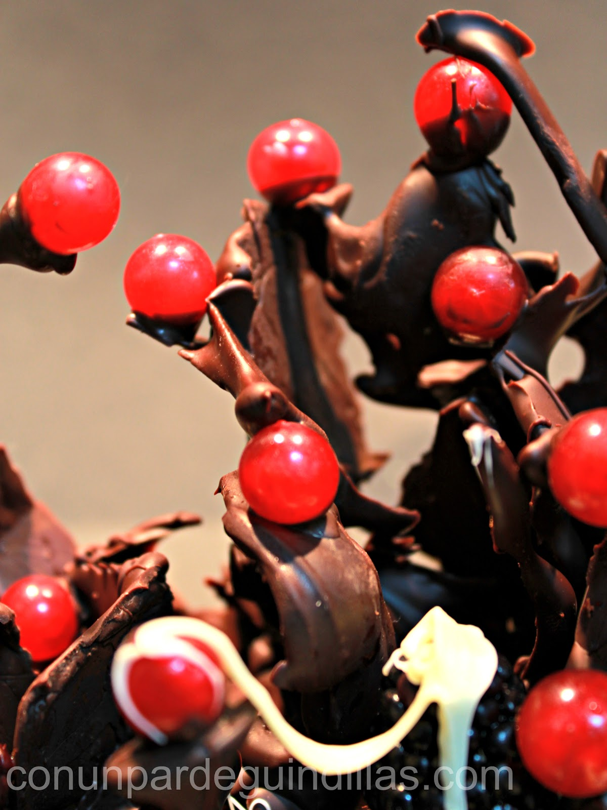 Bosque de chocolate y frutos rojos