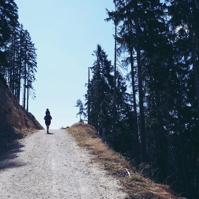 Grinsestern, Achensee, Tirol, #visittirol, Tirolliebe, Urlaubstipp, ausflugstipp, tirol erleben, bergliebe, berg, mountain, achensee tourismus
