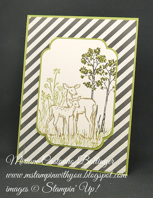 Miriam Castanho-Bollinger, mstampinwithyou, stampin up, demonstrator, dsc, masculine card, all occasions card, typeset specialty DSP, in the meadow, curvy corner trio punch, su
