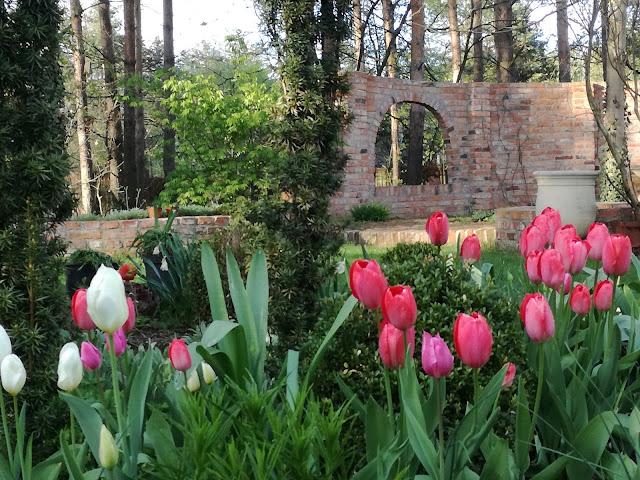 wiosenny ogród, mur z cegły rozbiórkowej w ogrodzie