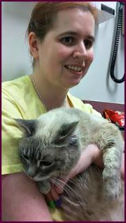 I am holding a grumpy Milita at the vet.