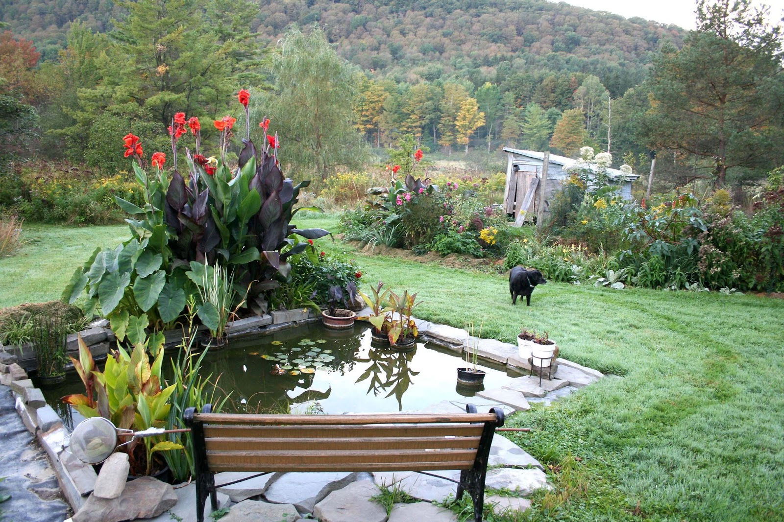 Home Garden Design Gallery: Tips To Make Minimalist Simple ... on Landscape Pond Design id=86501