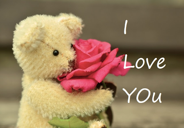 teddy bear day pictures 2018, teddy bear rose images, happy teddy day rose images download