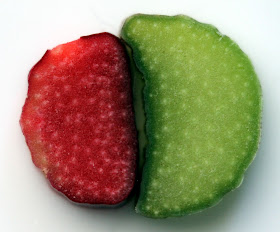 Slices of green and red rhubarb.