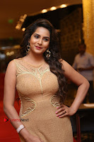 Actress Himaja Stills in Golden Spicy Long Dress at SIIMA Short Film Awards 2017 .COM 0262.JPG
