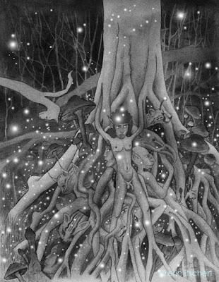 elfes, fées, farfadets, faunes, étang des chabots, Rouge Cloître, arbre magique, lieu enchanté, merveilleux